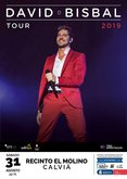 DAVID BISBAL -Tour 2019-